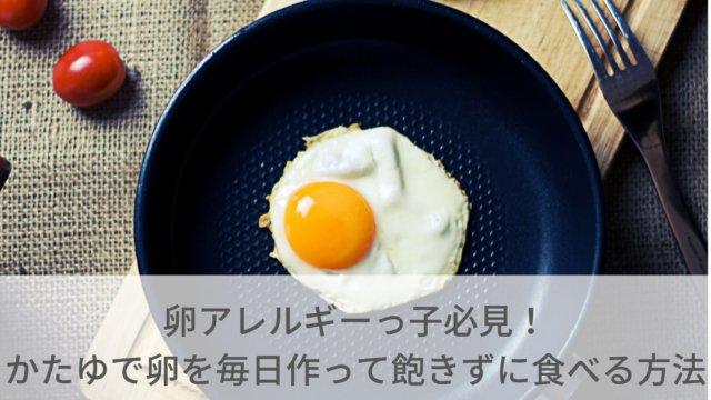 ゆで卵メーカーをもらえた株主優待
